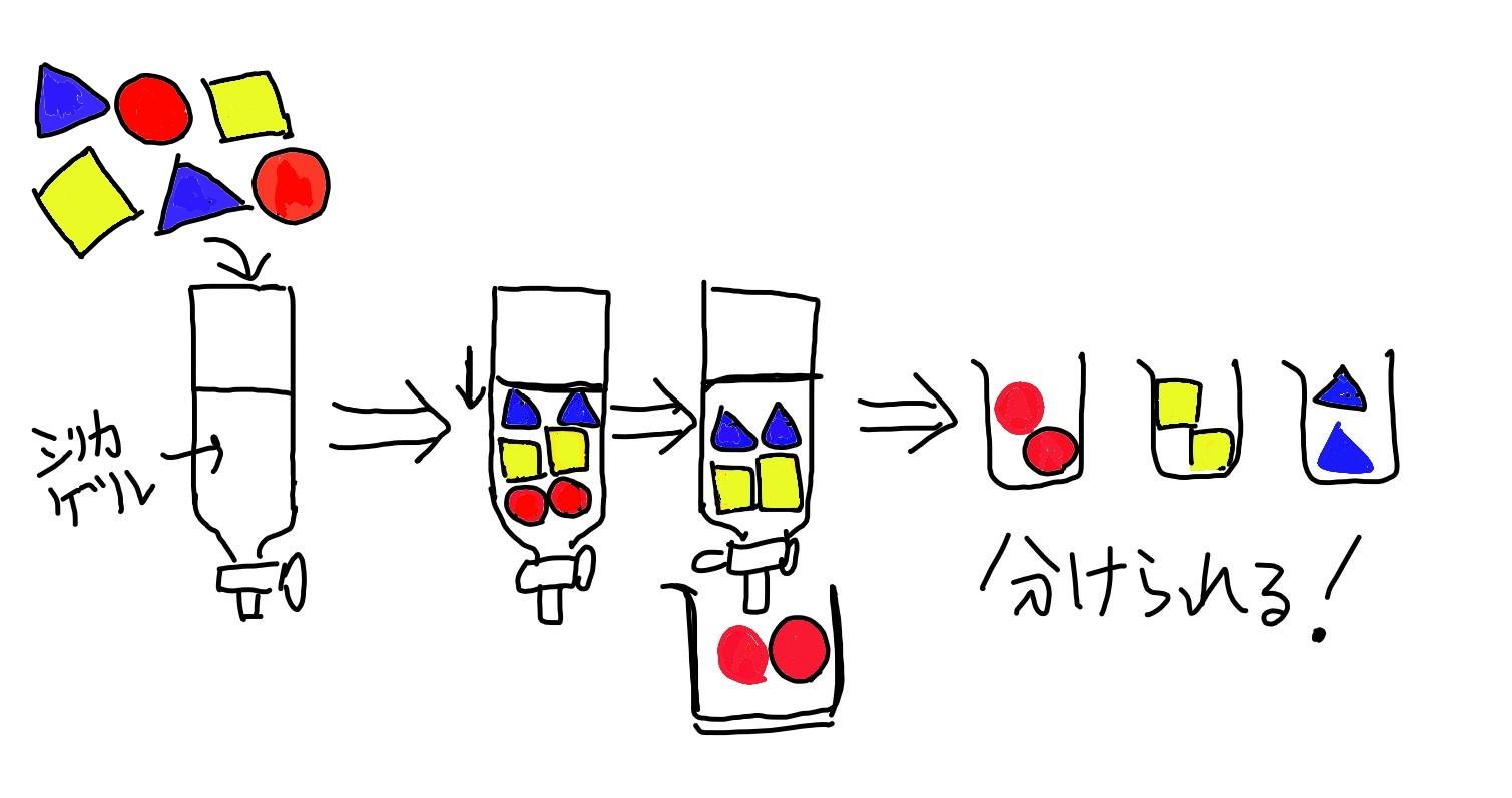 カラムの説明1